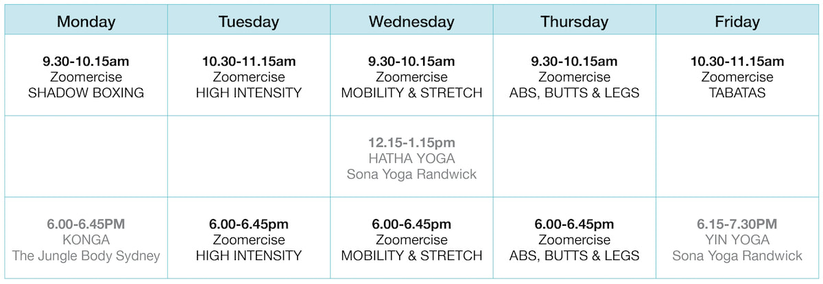 Virtual Fitness Small Group Timetable Sydney